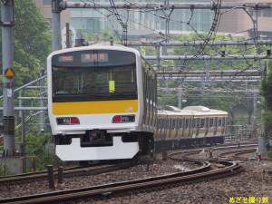 P5030982