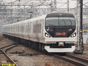 P5091162