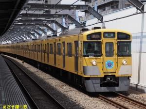 P8090118